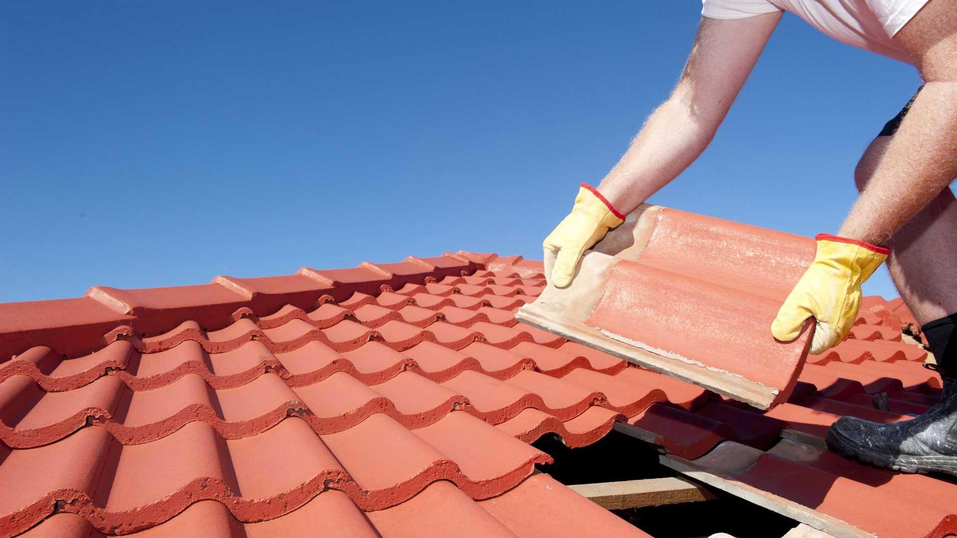 Die Dach-Reparierer.